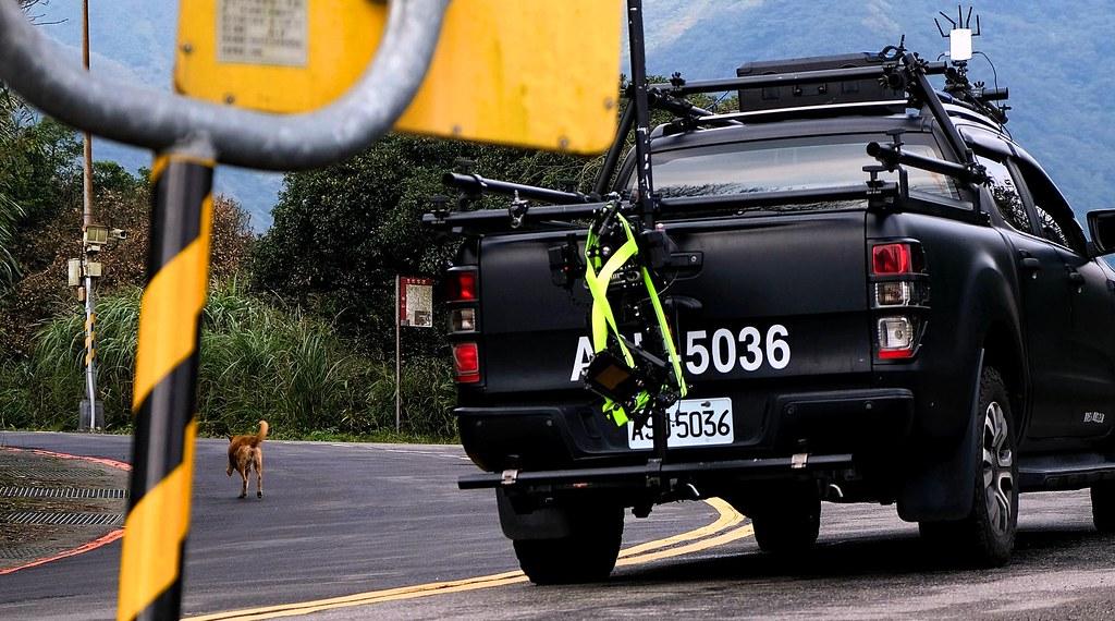 車禍經常造成犬隻死亡或斷肢,其中以陽金公路旁的馬槽地區最為嚴重,約有15%的流浪狗都少一隻腳。攝影:曾以寧。