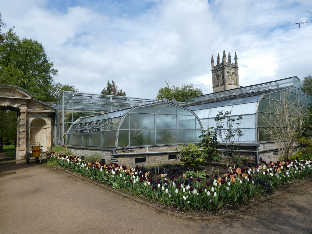 Glasshouses, Botanic Garden, Oxford
