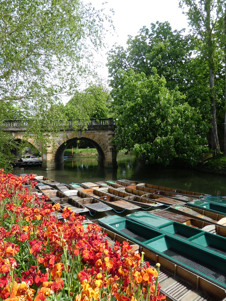 View from Oxford Botanic Garden to Magdalen Bridge