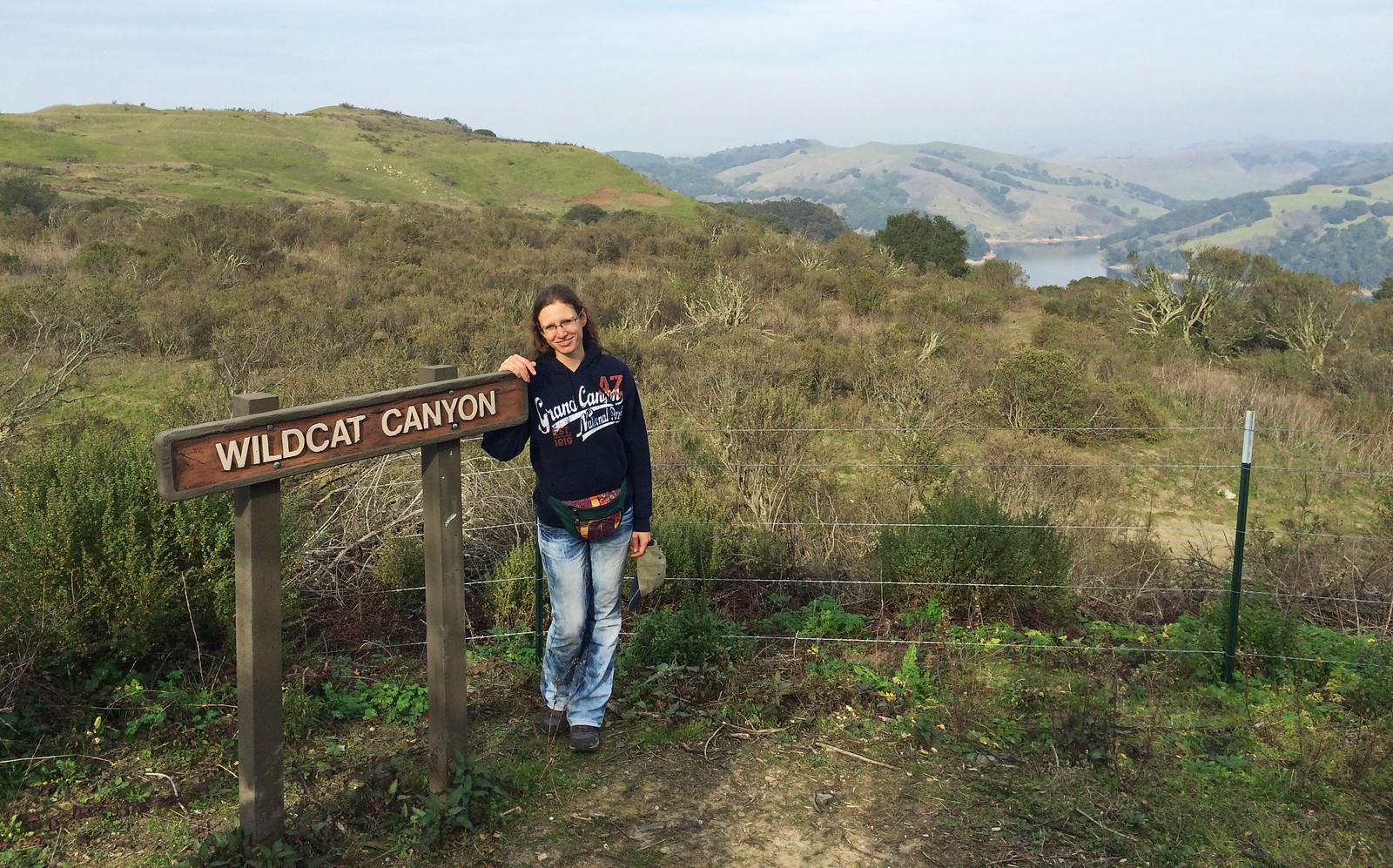 Wildcat Canyon, California, USA