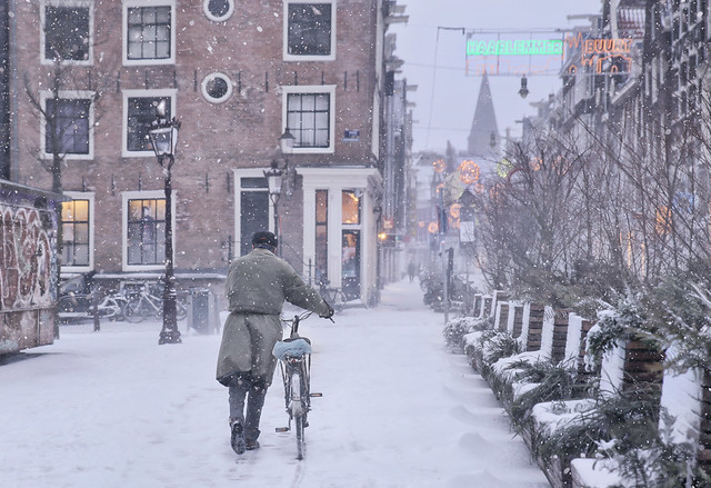 The cyclist through the snow storm doesn't see the magical world