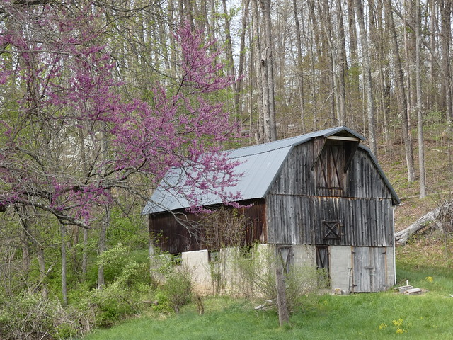 Beanblossom Bottoms Nature Preserve - Sycamore Land Trust - An Old Barn A Couple Miles Down the Road