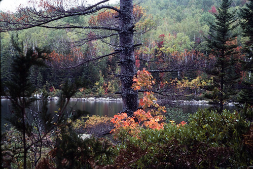 Autumn in New England (1)