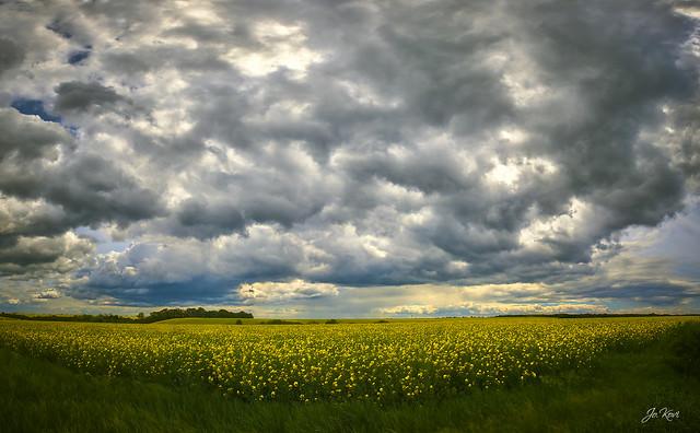 Esni készül - It's going to rain (2021.05)