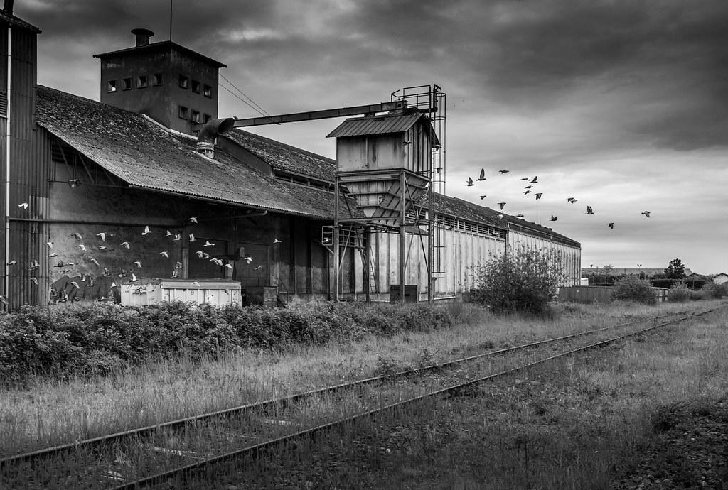 Sur l'ancienne voie ferrée à Riscle 51192521614_d4405d2a7c_b