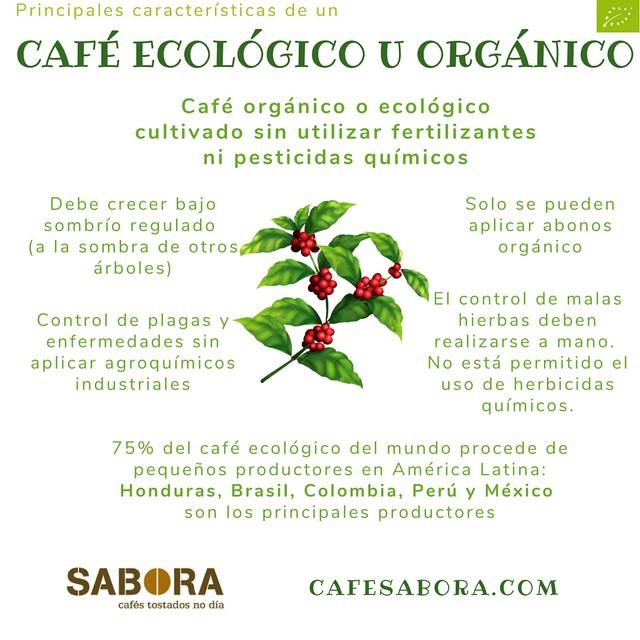 Características de un café ecológico