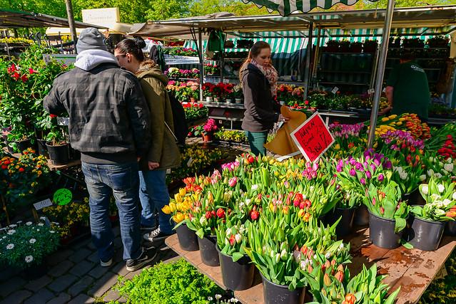 20140418_21_Münsterland(158) - Blumen auf dem Markt in Münster /  Flowers on the market in Munster