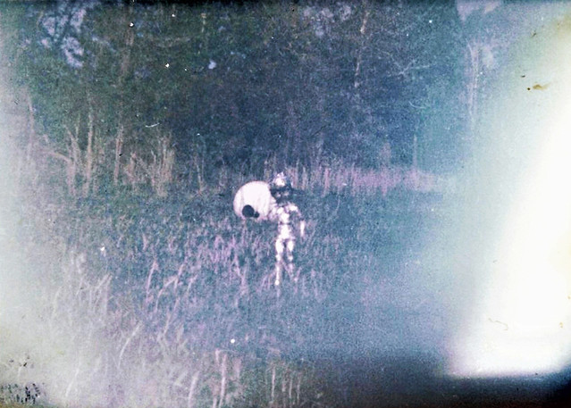 I've seen this photo on the internet as conclusive proof that alien life has visited Earth. The image was taken in July 1967 by a 14 year old kid named Ronnie Hill using 126 Kodacolor film. It supposedly shows an alien and its craft. What do YOU think?