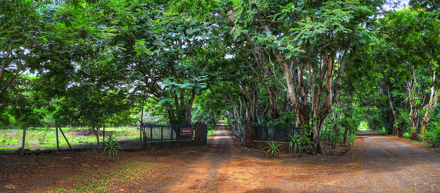 Mauritius near Tamarin II *explored*