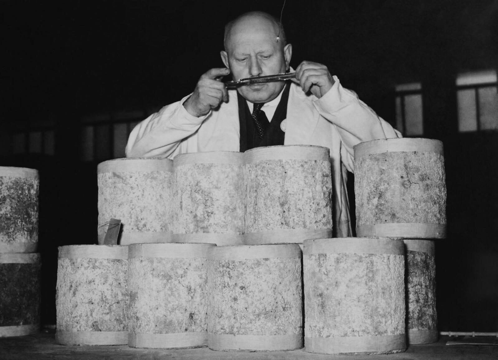 06. Конкурс сыров на молочной выставке в Олимпии