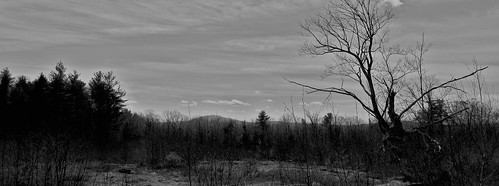 crotched mtn mt mountain bennington greenfield francestown nh new hampshire hill trees forest hills monadnock view bw