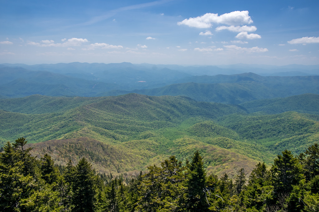 View from the fire tower 2