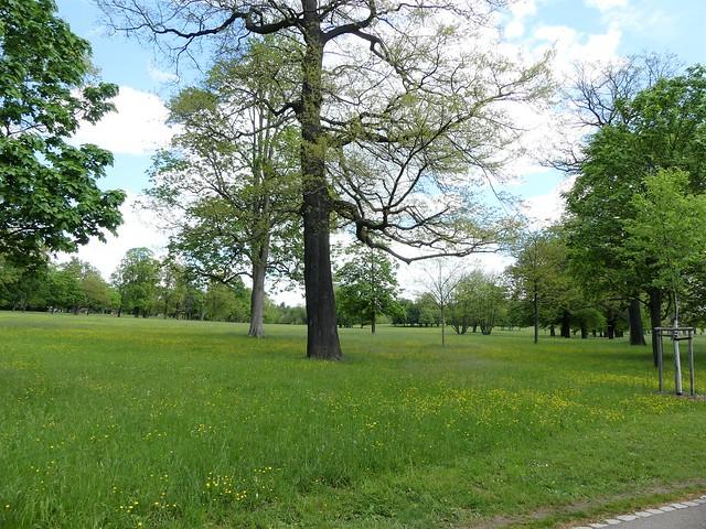 Rosensteinpark Stuttgart