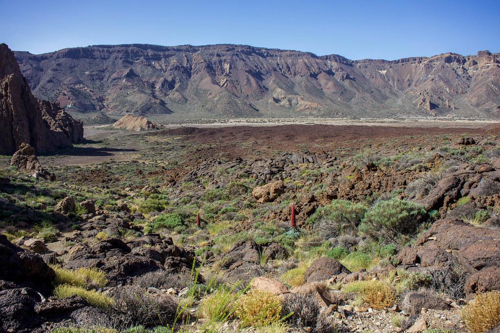 Circo volcánico Siete Cañadas desde el sendero Roques de Garcia