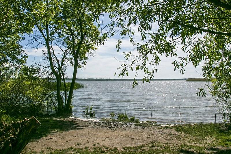 Folyamatosan rendezik a Tisza-tavi horgászhelyeket