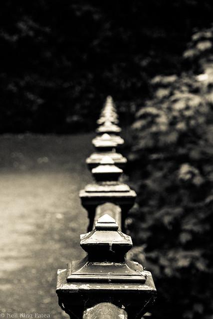 Alum Chine - Photocredit Neil King-8