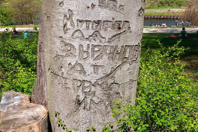 Potsdam, Park Babelsberg: Am Ende des 2. Weltkriegs hinterließen sowjetische Soldaten Spuren im Park - When the war was over, Soviet soldiers left some traces in the park