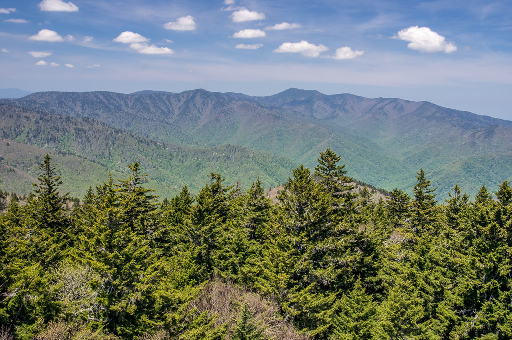 View from the fire tower 1