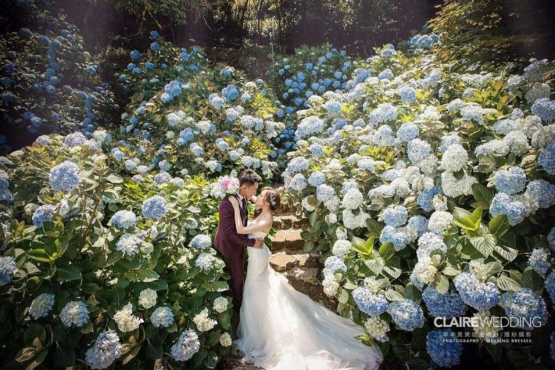 竹子湖拍婚紗