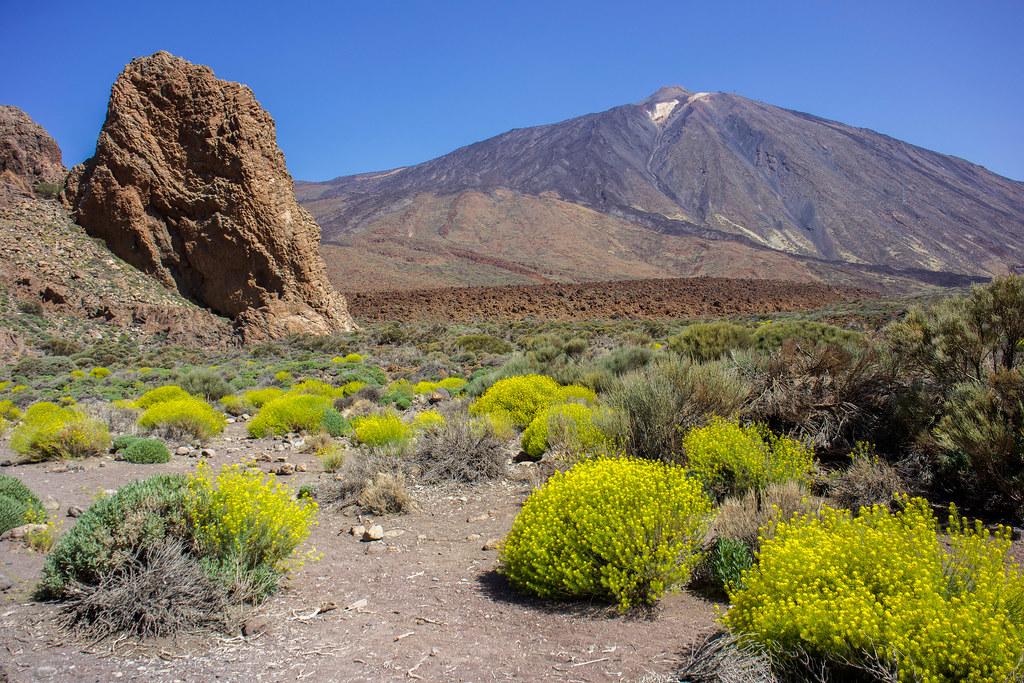 Volcan del Teide desde los Roques de García