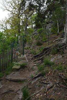 Teufelsstieg in Richtung Blankenburg (Harz)