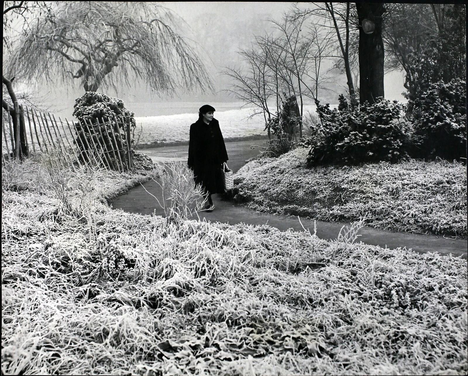 13. Зима приходит в Лондон, зима снова с нами, и сегодня утром лондонцы, проснувшись, обнаруживают, что город весь покрыт белым инеем.