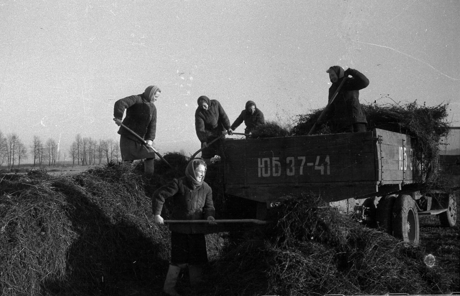 1952. Колхозницы