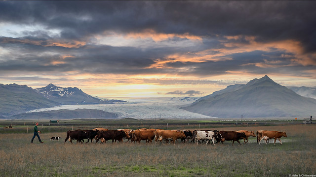 Iceland, a Land of Glaciers