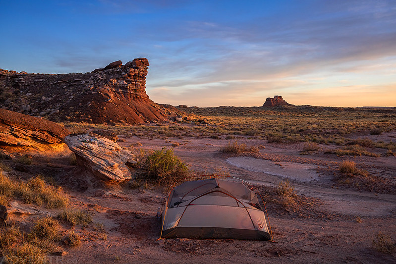 Petrified Forest Wilderness Camp