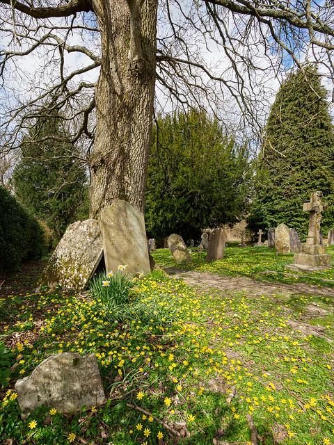 April in the churchyard at Buncton