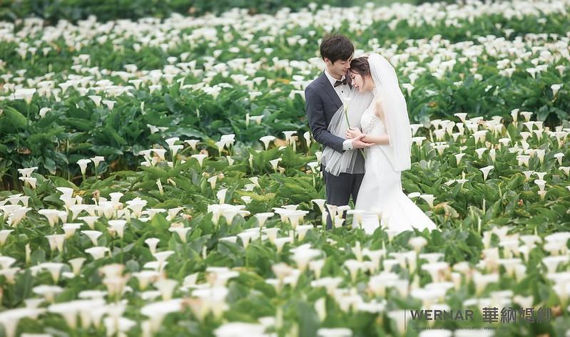 陽明山拍婚紗
