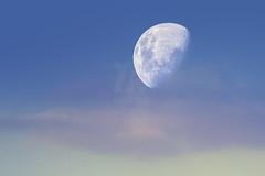 Lua Quarto Crescente | First Quarter Moon