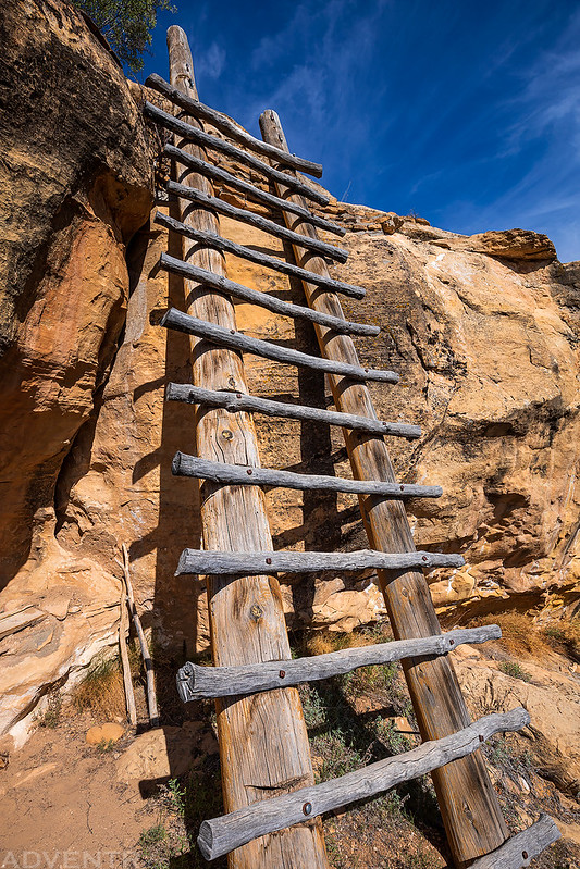 Ladder Into the Canyon