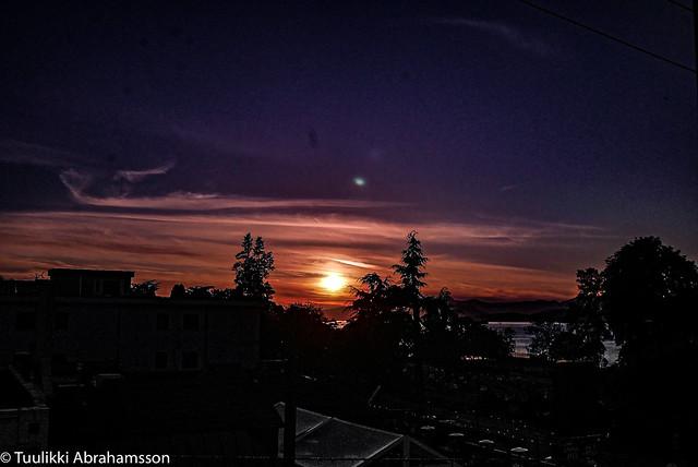 May 21, COVID-sunset (No. 398)