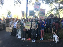 Signs at Climate Strike Melbourne 21 May 2021