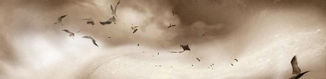 ⁛kite.kaos⁛