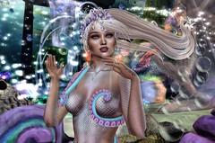 Nessa Nebula @ Liquid