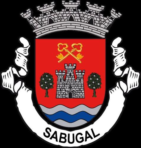 Brasão-Sabugal-530x555 (2)