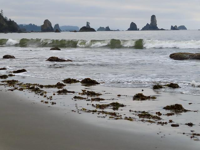 Morning Awakens at Third Beach (In Explore 5/23/21)