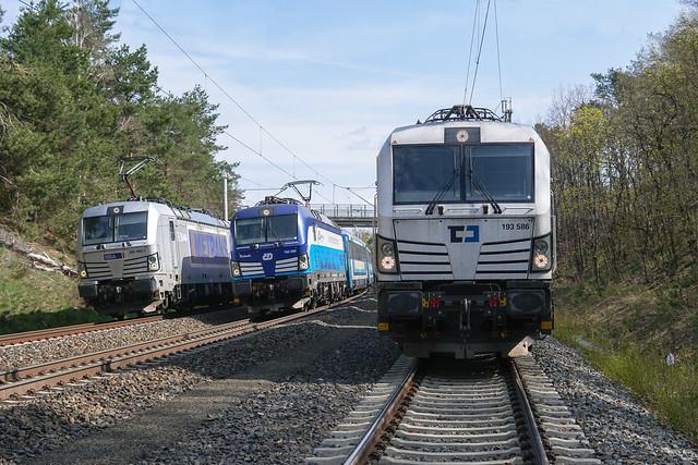 193 586 ČD Cargo, a.s.   Hohenleipisch   April 2021