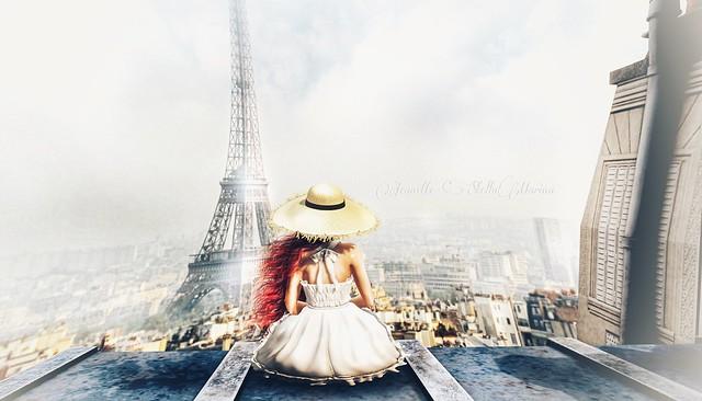 Parisian Rooftops...