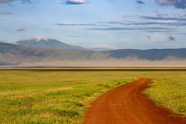 Armchair Traveling - Early Morning in the Ngorongoro Crater, Tanzania