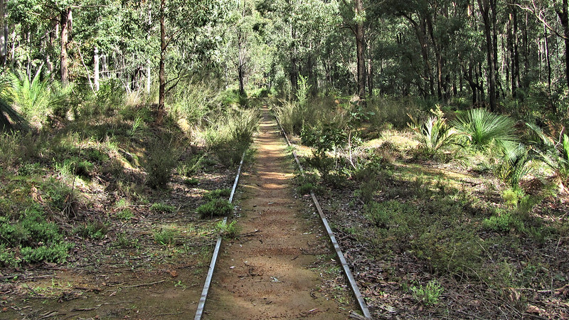 Discontinued Railway Track