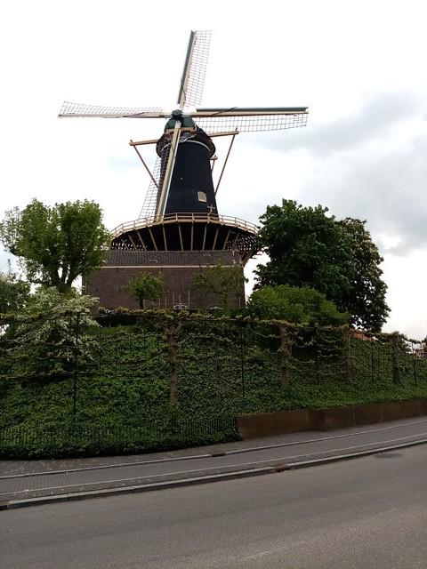 Woorden windmill