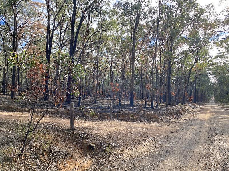 9 - Mt Pleasant Road Burn (0720) - N Bartlett