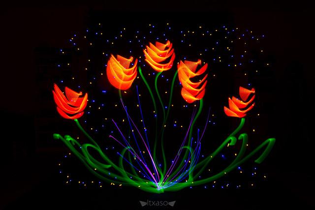 No tengo ninguna preferencia entre las flores, siempre y cuando sean salvajes, libres y espontáneas. Edward Abbey