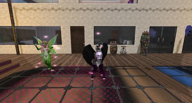 Daisy and Trinity at Stray Cat