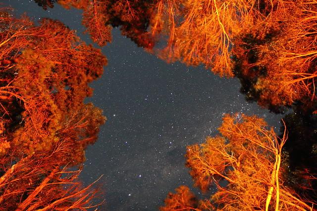 Framed starscape