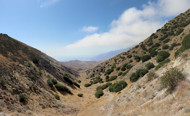 Looking south, down the canyon toward the Mesa Wind Farm, from the PCT northeast of San Gorgonio Pass