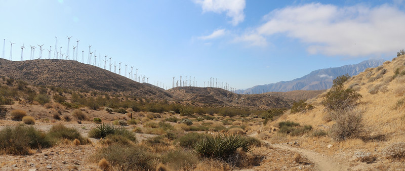 Panorama view of windmills and the Mesa Wind Farm